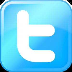 Twitter button2